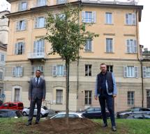 Ai Giardini Cavour un tiglio in ricordo di Gandhi, dono del Consolato Generale dell'India di Milano