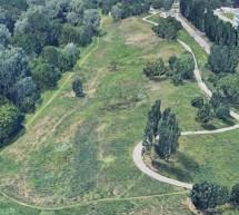 Un nuovo bosco di oltre 2mila e 100 piante nel parco Sangone grazie a Rina e Arbolia