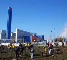 """Cento volontari per seicento alberi: un successo """"1000 alberi per Torino"""""""