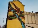 I 17 obiettivi per lo sviluppo sostenibile visti dalla street art
