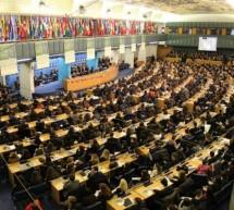 La straordinaria occasione di partecipare a una seduta dell'ONU