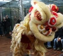 Capodanno cinese, una domenica di festa