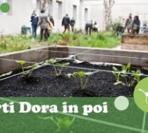 Da maggio a luglio progetti ed iniziative al Parco Dora