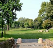 Giornata nazionale degli alberi 2020: prosegue il grande piano di forestazione urbana della Città di Torino