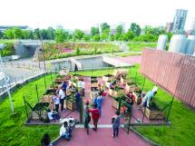 Il Parco Dora, uno spazio che vive