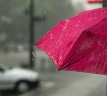 Approvata la dichiarazione di emergenza climatica e ambientale della Città di Torino
