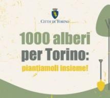 """Un bosco davanti all'inceneritore. Torna """"Mille Alberi a Torino"""""""