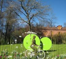 Il servizio del Verde Pubblico della Città di Torino a Messer Tulipano