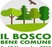 A Torino il quarto Congresso nazionale di Silvicoltura