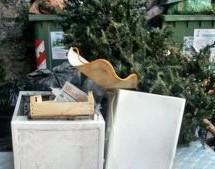 Dal salotto al cassonetto? Come smaltire in modo corretto l'albero di Natale naturale
