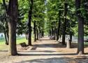 L'Associazione Pakistan Piemonte celebra l'anniversario dell'indipendenza del Paese asiatico donando 100 alberi per i parchi torinesi