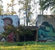 Stanziati 950 mila euro per la messa in sicurezza del Parco Michelotti