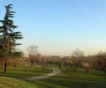 """Mirafiori Sud sarà un prototipo di """"città verde"""""""