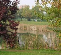 Pellerina: vietato bagnarsi nei laghetti e nello stagno