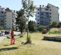 Ultimo taglio dell'erba in corso, anche sui marciapiedi