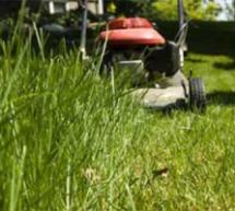 Riparte lo sfalcio dell'erba nella aree verdi della città