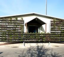 Progetto proGireg: terminati i giardini verticali alla Casa di Ospitalità Notturna di corso Tazzoli 76